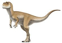 allosaurus_juvenile_reconstruction.jpg